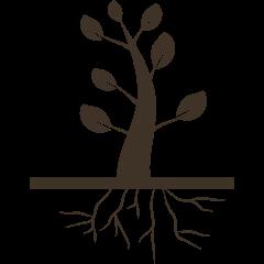 Root Zone Improvement